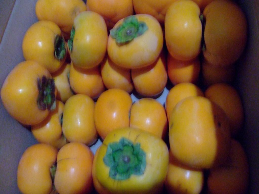 柿が届きました!